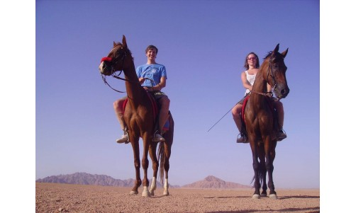 /sharmelsheikhexcursions/169-438-thickbox/horse-riding-safari-excursion-from-sharm-el-sheikh-egypt.jpg