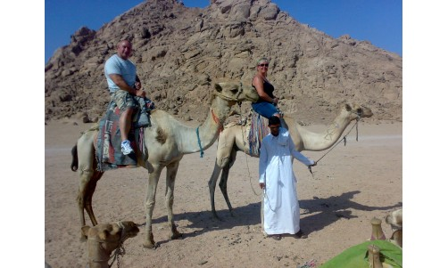 /sharmelsheikhexcursions/179-441-thickbox/camel-riding-safari-excursion-from-sharm-el-sheikh-riding-camel-trip-in-sinai-desert-sharm-el-sheikh-egypt.jpg