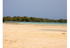 Safari Tours to the Mangroves of Nabaq National Park