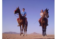 Horse Riding Safari Excursion from Sharm El Sheikh - Horseback Trip in Sharm Sinai
