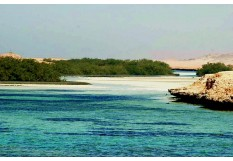 Sharm El Sheikh 3 nights 4 days tour package (accommodation & transfers)